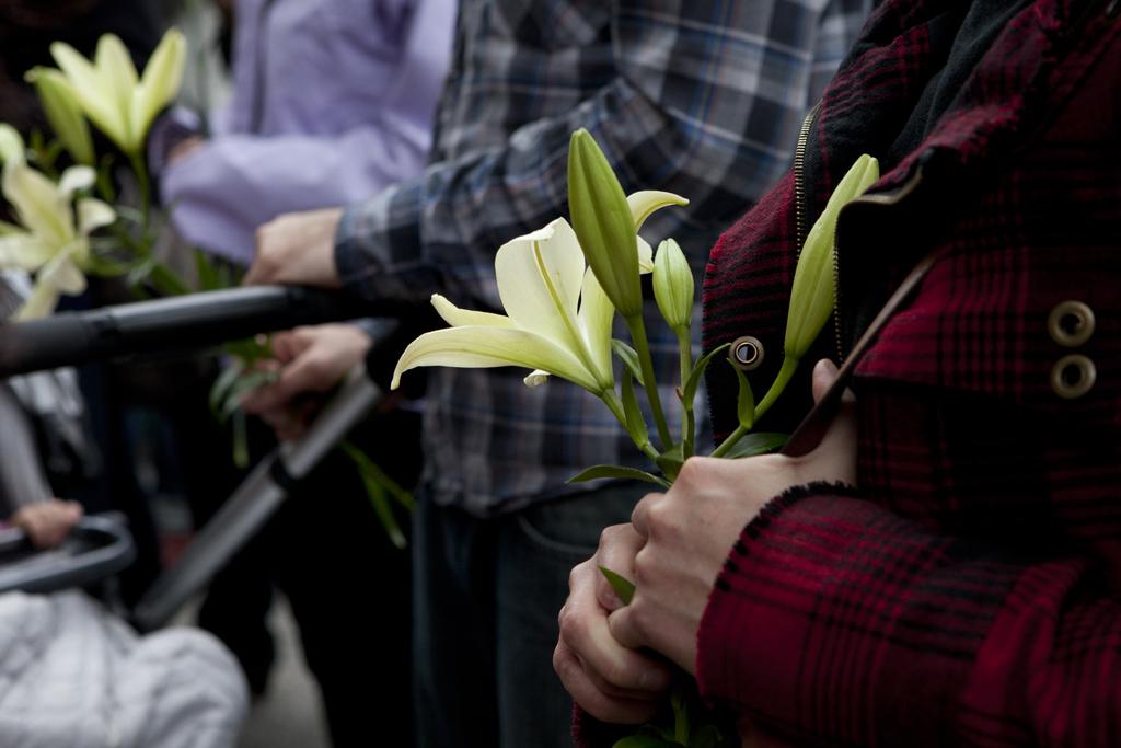 Hand holding flower_Perram_small